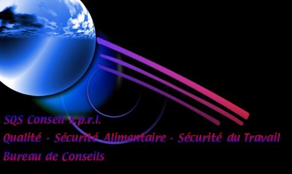 Logo SQS Conseil - V2